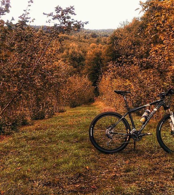 How To Ride A Mountain Bike
