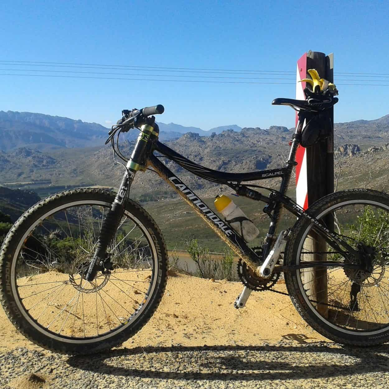 Cannondale Bike Reviews for 2021